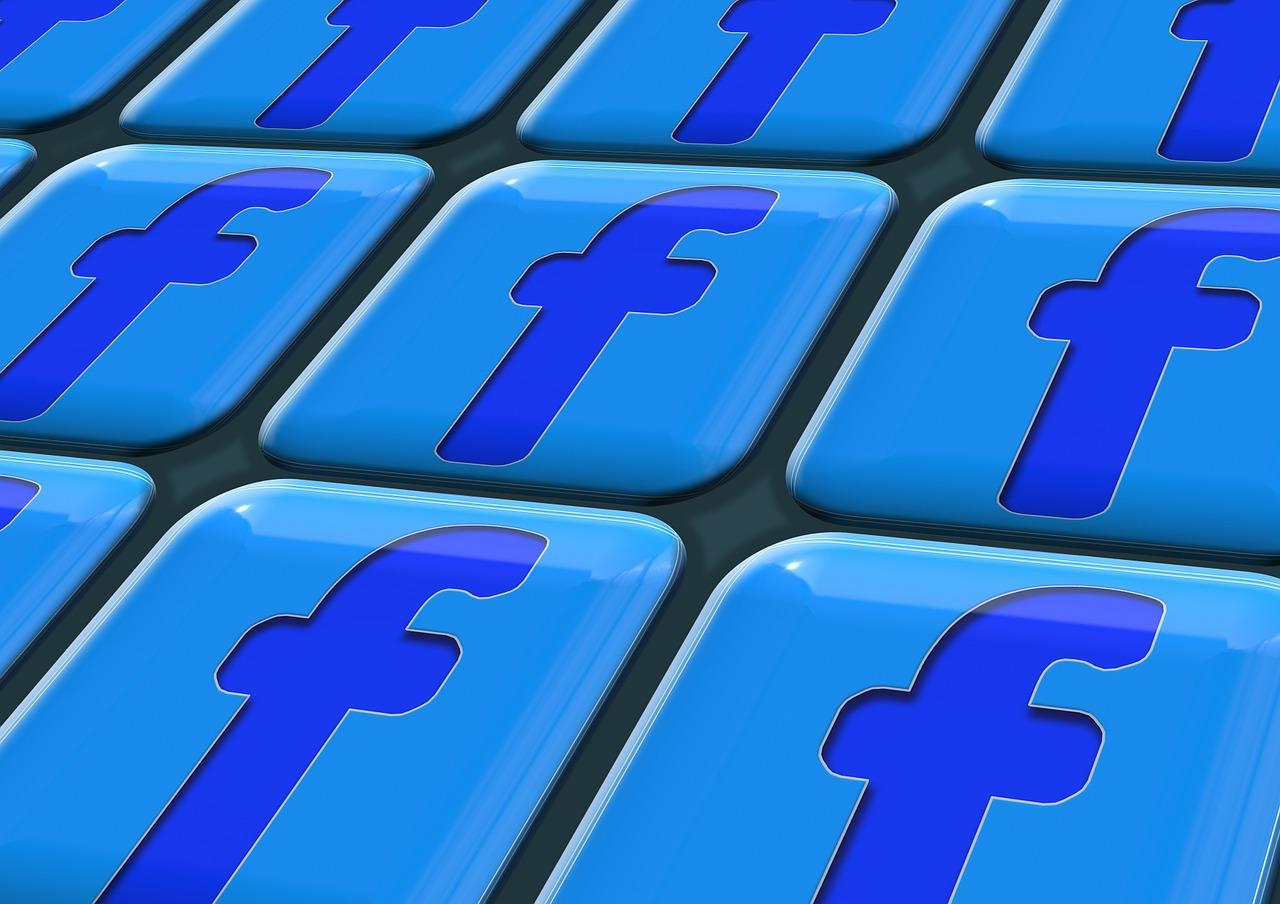 L'importance de Facebook dans le développement de son activité